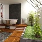 A natureza dentro de casa
