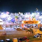 Arte & Cultura - 6ª Feira da Pupunha e do Agronegócio em Juquiá consagra-se como a maior do Vale do Ribeira