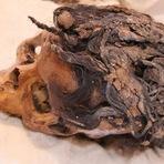 Curiosidades - Descoberta mulher do antigo Egito com 70 extensões de cabelo