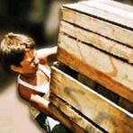 Trabalho infantil e evasão escolar