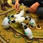 Inovação na robótica modular