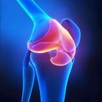 Saúde - Como regenerar a cartilagem!