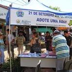 Meio ambiente - Prefeitura de Registro realizará Semana da Árvore