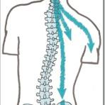 O que a subluxação pode causar?
