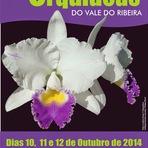13ª Exposição Nacional de Orquídeas do Vale do Ribeira  em Registro-SP