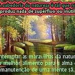 Vida e beleza na poderosa natureza!