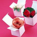 Flores para presentes – Saiba como acertar em cheio na escolha