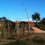 Na favela Dilma Rousseff, falta água e luz – mas tem Bolsa Família