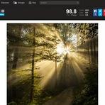 Como copiar imagens do site 500px.com