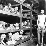 Curiosidades - Entenda a verdade sobre o Holocausto