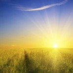 Como a Glória de Deus é Revelada? Leia e entenda!
