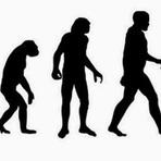 Ciência - 9 fatos curiosos acerca da evolução humana