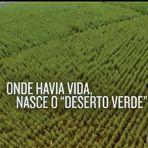 O veneno do modelo agrícola