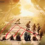 Curiosidades - Se o homem evoluiu do macaco por que eles ainda existem?