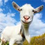 Downloads Legais - Crazy Goat FREE