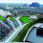 Copenhague é segunda cidade no mundo a tornar obrigatórios os telhados verdes
