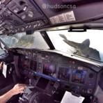 Piloto aéreo e fotógrafo, tudo de bom!