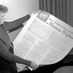 Direitos humanos: história, fundamentos e críticas