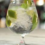 Gin-Tônica | Coquetel
