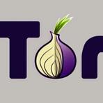 Entendendo a TOR Network