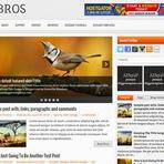 Design - Bros Responsive Blogger Template