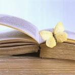 Poesias - O Livro