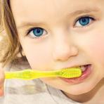 Quando E Com Que Freqüência Você Deve Escovar Os Dentes?