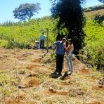 Meio ambiente - OSCIP - Associação Ecológica Piratingaúna: Projeto - Produção de Águas - setembro 2014