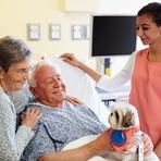 Você conhece os benefícios da Pet terapia?