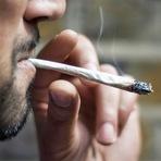 Internacional - Cannabis é tão viciante como a heroína, novo estudo afirma