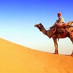 O Google emprega Camel de Tomar Liwa Desert para criar imagens do Street View