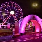 Outubro Rosa: Giro pela Vida – Roda Gigante no Parque Ibirapuera