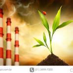 Meio ambiente - Medida permite comunicação de acidente ambiental ao IBAMA pela internet
