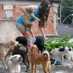 Renata Brito protetora dos animais