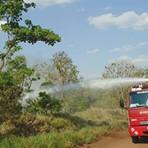 Meio ambiente - Incêndio destrói cerca de 6 hectares de área de preservação ambiental