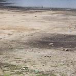 Meio ambiente - Nível do sistema Cantareira cai para 5,5% e atinge seu nível mais crítico