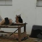 Pintura - Criminosos furtam mais de 100 eletrônicos de loja de departamentos em Itajaí