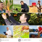 Meio ambiente - No auge da profissão, engenheiros agrônomos comemoram o seu dia