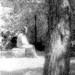 Aparições de fantasmas em fotografias e as suas histórias