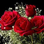 Buquê de rosas não está ultrapassado, o romantismo está sempre em alta!