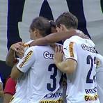 Futebol - O gol de Botafogo 1 x 0 Corinthians – Brasileiro Serie A – 11/10 /2014