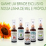 Diversos - Spray de Mel e Própolis grátis