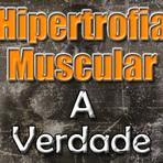 Saúde - Hipertrofia Muscular - As respostas que você sempre quis saber