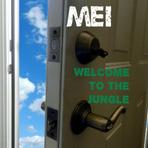 Educação - MEI (Micro Empreendedor indivídual) – Um pequeno passo para ser gigante