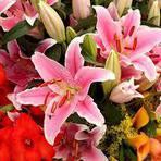 Flores para presente: Um mercado belo e lucrativo