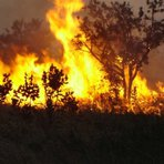 Sinal dos Tempos: Brasil em Chamas - Incêndios no país em outubro dobram em relação ao mesmo mês de 2013