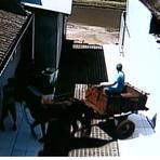 Bandidos roubam cofre de empresa de Maringá e fogem de charrete