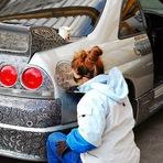 Homem deixa sua esposa pintar seu carro com um marcador e o resultado é incrível