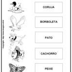 Curiosidades - Atividades Escolares para Imprimir Variadas