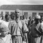 Comportamento - O holocausto brasileiro ceifou 60 mil vidas hospital colônia